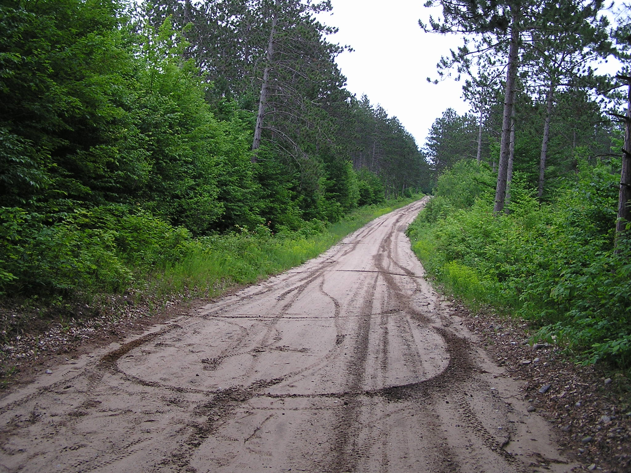 Some endless road we were riding on. Wolverine, MI